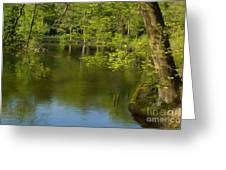 Spring On The Lake Greeting Card by Angela Doelling AD DESIGN Photo and PhotoArt
