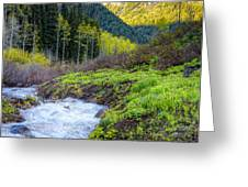 Spring Snow Melt Wasatch Mountains Utah Greeting Card by Utah Images