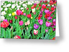 Spring Tulips Flower Field I Greeting Card by Artecco Fine Art Photography