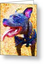 Staffordshire Bull Terrier In Oil Greeting Card by Michael Tompsett