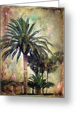 Starry Evening In St. Augustine Greeting Card by Jan Amiss Photography