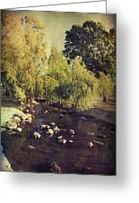 Stepping Stones To My Heart Greeting Card by Laurie Search