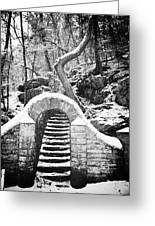 Steps Along The Wissahickon Greeting Card by Bill Cannon