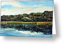 St.johns River Greeting Card by Linda Olsen