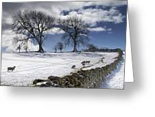 Stone Fence, Weardale, County Durham Greeting Card by John Short