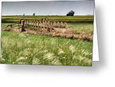 Storm Across The Prairie Greeting Card by Douglas Barnett