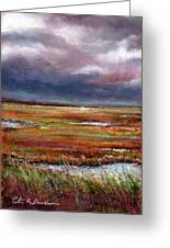 Storm Coming Greeting Card by Peter R Davidson