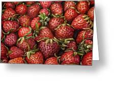 Strawberries -2 Contemporary Oil Painting Greeting Card by Natalja Picugina