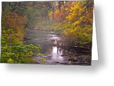 Stream of the Fall Greeting Card by Dale Stillman