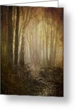Stroll Through My Mind Greeting Card by Meirion Matthias
