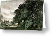 Study Of Trees Greeting Card by John Constable