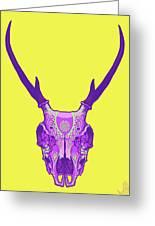 Sugar Deer Greeting Card by Nelson Dedos Garcia