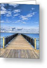 Summer Bliss Greeting Card by Tammy Wetzel