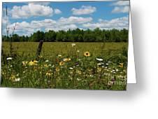 Summer Dreams... Greeting Card by Nina Stavlund