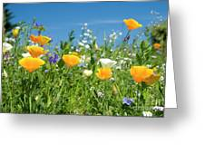 Summer Flowers Greeting Card by Sophie De Roumanie
