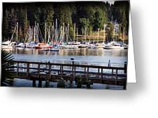 Summer In Deep Cove Greeting Card by Tom Buchanan