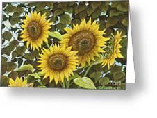 Summer Quintet Greeting Card by Marc Dmytryshyn