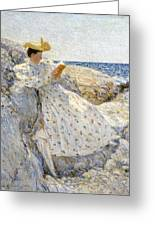 Summer Sunlight Greeting Card by Childe Hassam
