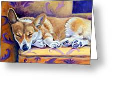 Sun Glow Nap - Pembroke Welsh Corgi Greeting Card by Lyn Cook