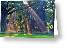 Sun Shower B Greeting Card by Peter  McIntosh