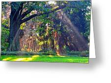 Sun Shower C Greeting Card by Peter  McIntosh