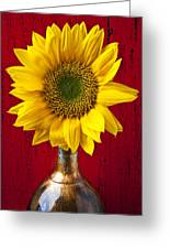 Sunflower Close Up Greeting Card by Garry Gay