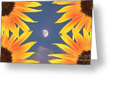Sunflower Moon Greeting Card by James BO  Insogna