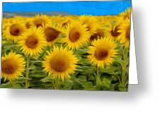 Sunflowers In The Field Greeting Card by Jeff Kolker