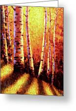 Sunlight Through The Aspens Greeting Card by David G Paul