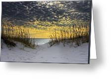 Sunlit Passage Greeting Card by Janet Fikar