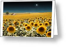 Suns And A Moon Greeting Card by Mal Bray