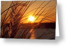 Sunset over Lake Wylie SC Greeting Card by Dustin K Ryan