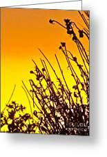 Sunset Sand-doons  Greeting Card by Debra     Vatalaro