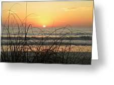 Sunset Sea Grass Greeting Card by Sean Allen