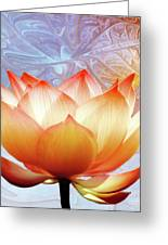 Sunshine Lotus Greeting Card by Photodream Art