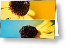 Susans Greeting Card by Lisa Knechtel