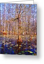 Swamp Tree Greeting Card by Susanne Van Hulst