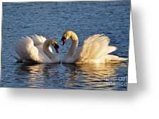 Swan Heart Greeting Card by Mats Silvan