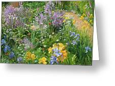 Sweet Rocket - Foxgloves And Irises Greeting Card by Timothy Easton