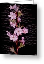 Sweet Smell Of Spring Greeting Card by Debra     Vatalaro