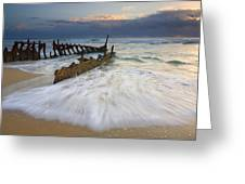 Swept Ashore Greeting Card by Mike  Dawson