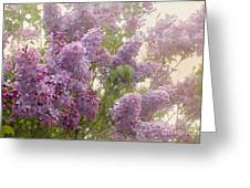 Swimming In A Sea Of Lilacs Greeting Card by Cindy Garber Iverson