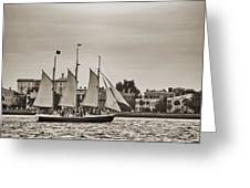 Tall Ship Schooner Pride Off The Historic Charleston Battery Greeting Card by Dustin K Ryan