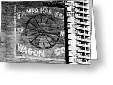 Tampa Harness Wagon N Company Greeting Card by David Lee Thompson