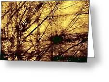 Tangled II Greeting Card by Jane Tripp