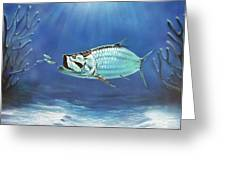 Tarpon Greeting Card by Larry Cole