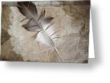 Tea Feather Greeting Card by Carol Leigh