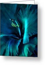 Teal Gladiola Flower Greeting Card by Jennie Marie Schell
