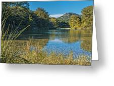 Texas Hill Country - The Frio River Greeting Card by Andre Babiak