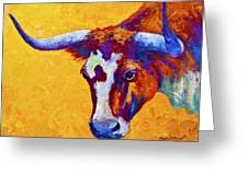 Texas Longhorn Cow Study Greeting Card by Marion Rose